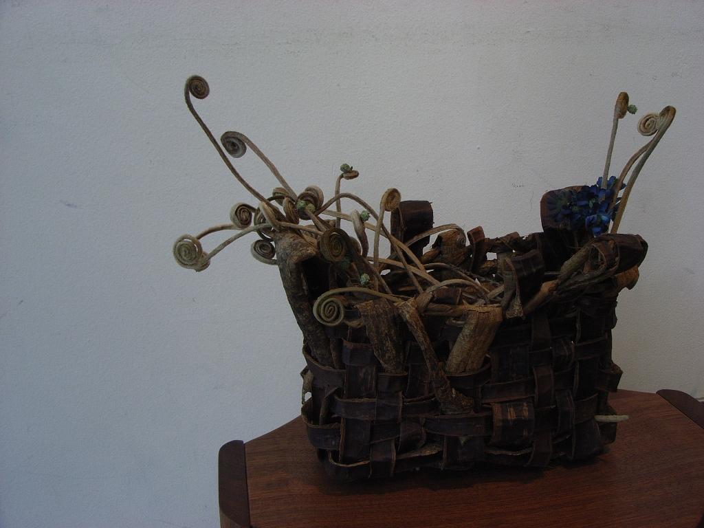 Rimg4890